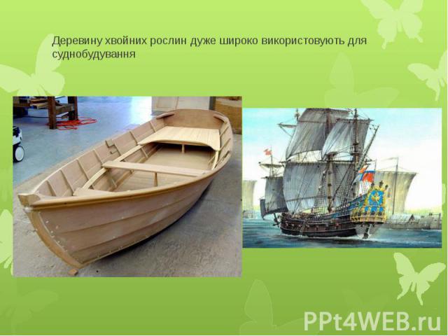 Деревину хвойних рослин дуже широко використовують для суднобудування