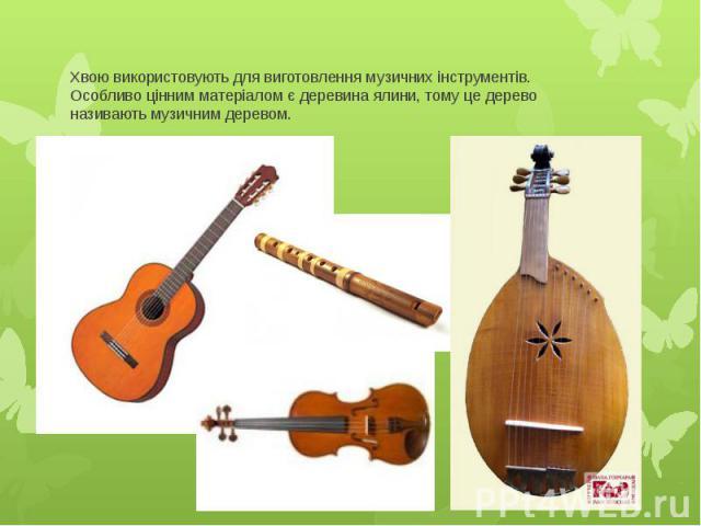 Хвою використовують для виготовлення музичних інструментів. Особливо цінним матеріалом є деревина ялини, тому це дерево називають музичним деревом.