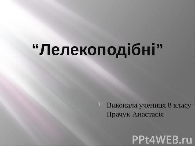 """""""Лелекоподібні"""" Виконала учениця 8 класу Прачук Анастасія"""