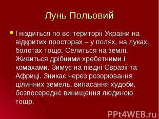 Гніздиться по всі території України на відкритих просторах – у полях, на луках,