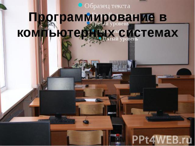 Программирование в компьютерных системах