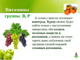 Витамины К осени у многих поспевает виноград. Хурму можно будет найти только с н