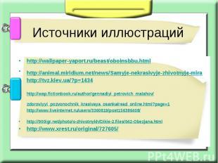 Источники иллюстраций http://wallpaper-yaport.ru/beast/oboinsbbu.html http://ani