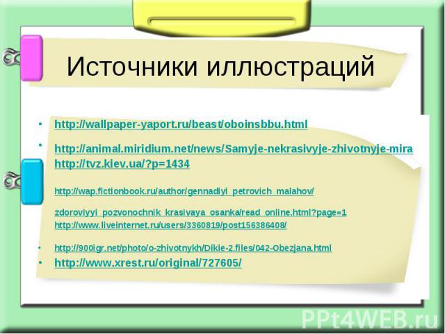 Источники иллюстраций http://wallpaper-yaport.ru/beast/oboinsbbu.html http://animal.miridium.net/news/Samyje-nekrasivyje-zhivotnyje-mira http://tvz.kiev.ua/?p=1434 http://wap.fictionbook.ru/author/gennadiyi_petrovich_malahov/zdoroviyyi_pozvonochnik_…