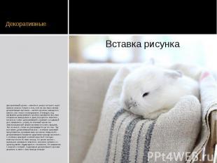 Декоративные Декоративный кролик – животное, вокруг которого ходит немало споров