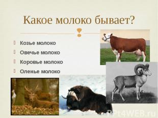 Какое молоко бывает? Козье молоко Овечье молоко Коровье молоко Оленье молоко Яка
