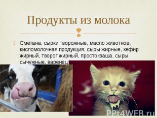 Продукты из молока Сметана, сырки творожные, масло животное, кисломолочная проду