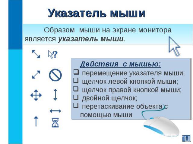 Образом мыши на экране монитора является указатель мыши. Образом мыши на экране монитора является указатель мыши.