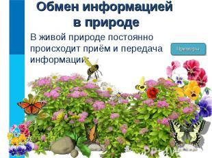 В живой природе постоянно происходит приём и передача информации: В живой природ