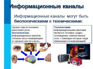Информационные каналы могут быть биологическими и техническими: Информационные к