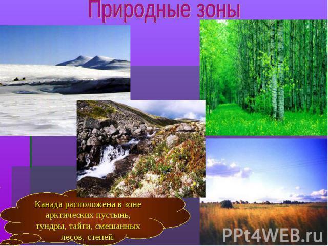 Канада расположена в зоне арктических пустынь, тундры, тайги, смешанных лесов, степей.