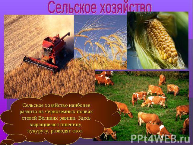 Сельское хозяйство наиболее развито на чернозёмных почвах степей Великих равнин. Здесь выращивают пшеницу, кукурузу, разводят скот.