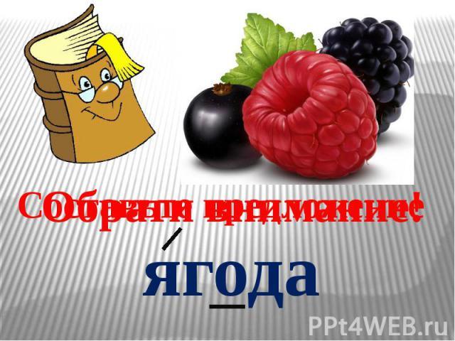 Составьте предложение ягода