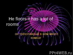 He floors it has a lot of rooms он трёхэтажный в нём много комнат