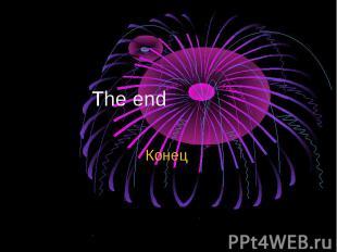 The end Конец