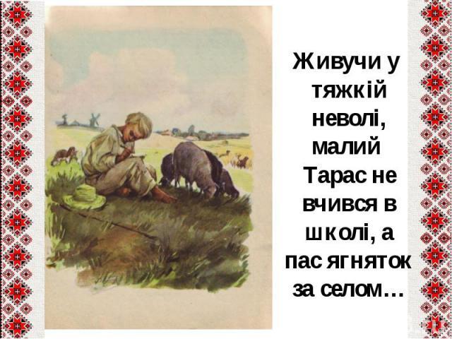 Живучи у тяжкій неволі, малий Тарас не вчився в школі, а пас ягняток за селом…