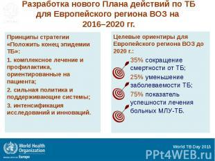 Разработка нового Плана действий по ТБ для Европейского региона ВОЗ на 2016–2020