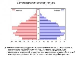 Половозрастная структураПолитика снижения рождаемости, проводимая в Китае с 1970