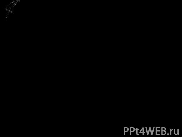 Верные-неверные утверждения1. Торговый путь, проходивший через Киев, назывался «Путь из варяг в греки»2. Олег правил в 11 веке.3. Россы служили в византийском флоте?4.Олег не воевал с Византией?5. Олег поставил ладьи на колеса и пошел по суше на Кон…
