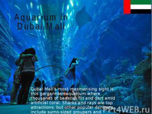 Aquarium in Dubai Mall Dubai Mall's most mesmerising sight is this gargantuan aq