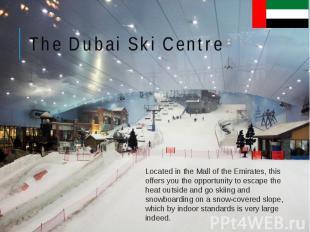 The Dubai Ski Centre