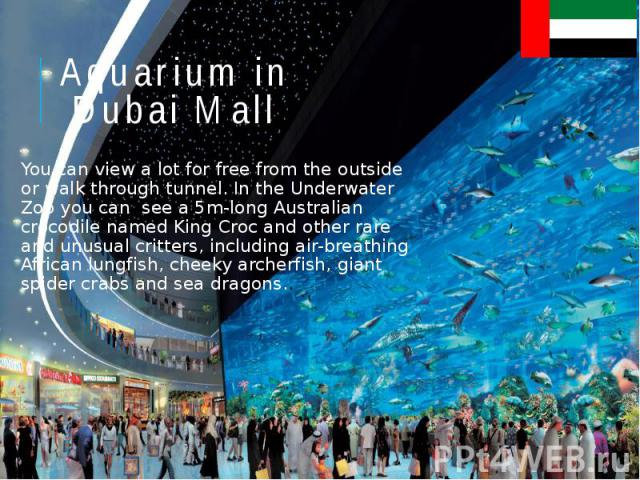 Aquarium in Dubai Mall You can view a lot for free from the outside or walk through tunnel. In the Underwater Zoo you can see a 5m-long Australian crocodile named King Croc and other rare and unusual critters, including air-breathing African lungfis…