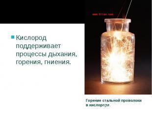 Кислород поддерживает процессыдыхания, горения, гниения. Кислород поддержи