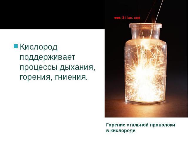 Кислород поддерживает процессыдыхания, горения, гниения. Кислород поддерживает процессыдыхания, горения, гниения.