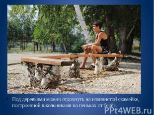 Под деревьями можно отдохнуть на извилистой скамейке, построенной школьниками на