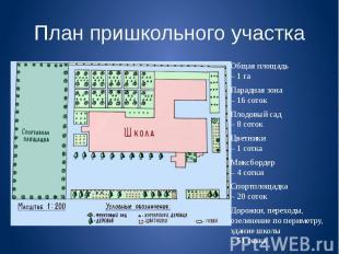 План пришкольного участка Общая площадь – 1 га Парадная зона – 16 соток Плодовый
