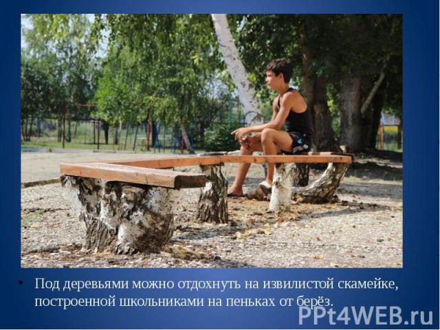 Под деревьями можно отдохнуть на извилистой скамейке, построенной школьниками на пеньках от берёз. Под деревьями можно отдохнуть на извилистой скамейке, построенной школьниками на пеньках от берёз.