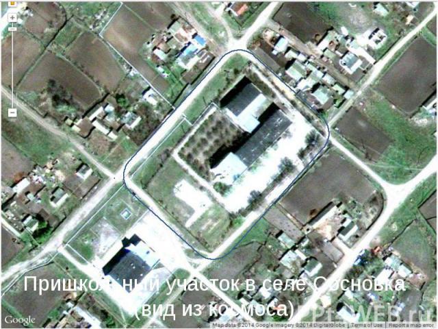 Пришкольный участок в селе Сосновка (вид из космоса)