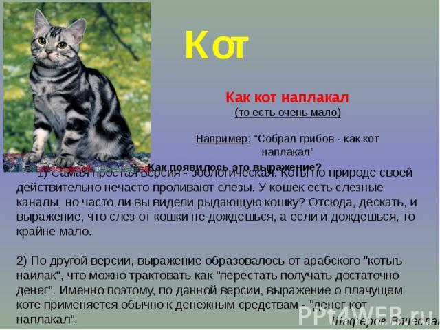 1) Самая простая версия - зоологическая. Коты по природе своей действительно нечасто проливают слезы. У кошек есть слезные каналы, но часто ли вы видели рыдающую кошку? Отсюда, дескать, и выражение, что слез от кошки не дождешься, а если и дождешься…