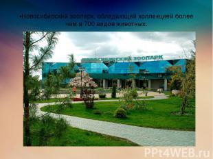 •Новосибирский зоопарк, обладающий коллекцией более чем в 700 видов животных.