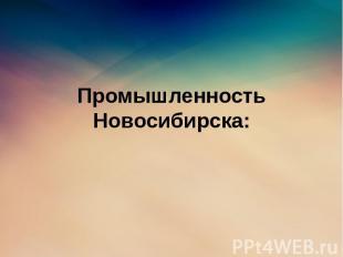 Промышленность Новосибирска: