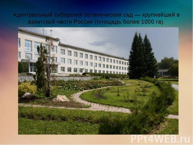 •Центральный сибирский ботанический сад — крупнейший в азиатской части России (площадь более 1000 га).