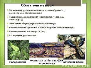 Обитатели мезозоя Вымирание древовидных папоротникообразных, разнообразие голосе