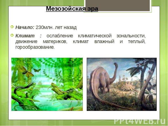 Мезозойская эра Начало: 230млн. лет назад Климат : ослабление климатической зональности, движение материков, климат влажный и теплый, горообразование.