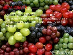 Мета даної роботи – визначити ефективність розвитку виноградарства у південній ч