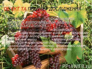 Об'єкт дослідження – ефективність розвитку виноградарства на півдні Чернігівсько