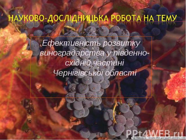 Ефективність розвитку виноградарства у південно-східній частині Чернігівської областіЕфективність розвитку виноградарства у південно-східній частині Чернігівської області