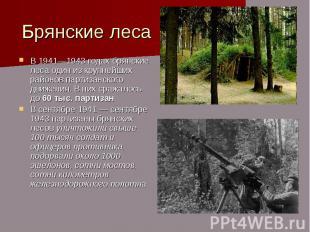 Брянские леса В 1941—1943 годах брянские леса один из крупнейших районов партиза