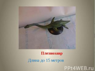 Плезиозавр Длина до 15 метров