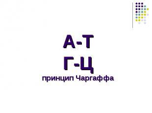 А-ТГ-Цпринцип Чаргаффа