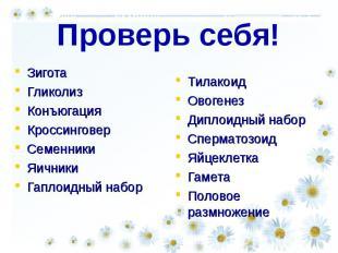 Проверь себя! Зигота Гликолиз КонъюгацияКроссинговерСеменникиЯичникиГаплоидный н