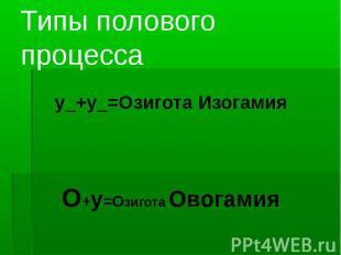 Типы полового процесса у_+у_=Озигота ИзогамияО+у=Озигота Овогамия
