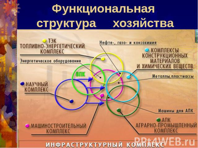Функциональная структура хозяйства