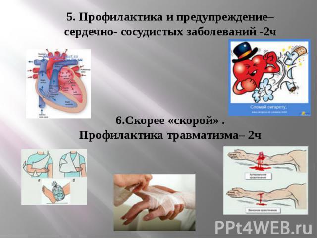 5. Профилактика и предупреждение–сердечно- сосудистых заболеваний -2ч 6.Скорее «скорой» .Профилактика травматизма– 2ч