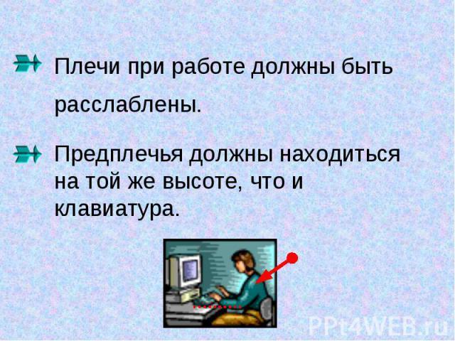 Плечи при работе должны быть расслаблены. Предплечья должны находиться на той же высоте, что и клавиатура.