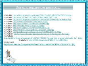 Использованные ресурсы Слайд №1: http://a23002.rimg.info/icon/148004800064232cb5